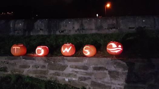 TOWS pumpkins